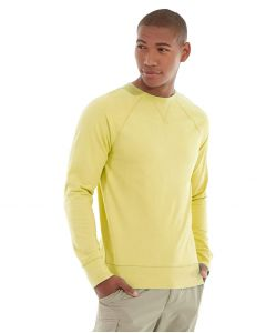 Frankie  Sweatshirt-XS-Yellow